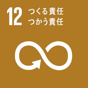 sdg-icon-12