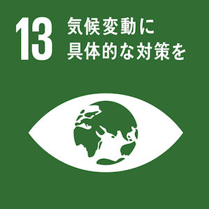 sdg-icon-13